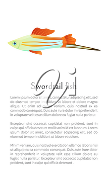 Colorful male swordtail fish isolated on white graphic. Freshwater aquarium fish icon on blank background, in cartoon style, vector illustration