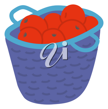 Wicker basket with red apples with leaves, picking fruit in wooden pottle. Sweet product, fresh nutrition, element of orchard, agricultural food vector. Picking apples concept. Flat cartoon