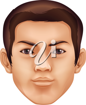 Illustration of a human face feature