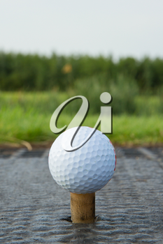 Golf ball with rubber tee with grass in the background