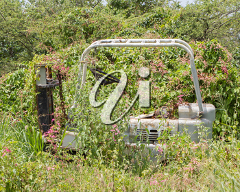 Abandoned lifting truck standing in the bushes