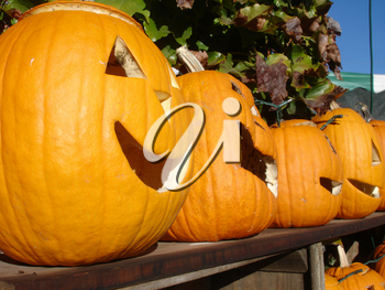 Stock Photo of Carved Halloween Pumpkins