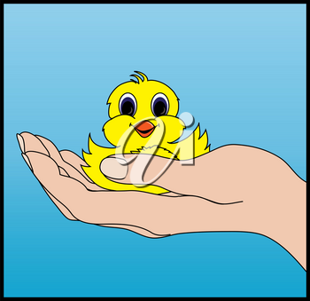 Clip Art Image of a Hand Holding a Baby Chick