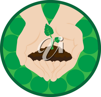 Clip Art Illustration Of Hands Holding A Plant Seedling