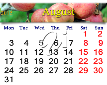 beautiful calendar for the August of 2015 year with apples