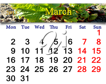 calendar for March of 2015 year with ribbon with green rhubarb