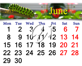 calendar for June of 2015 year with caterpillar of butterfly