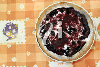pie with bilberry on plate on the cloth