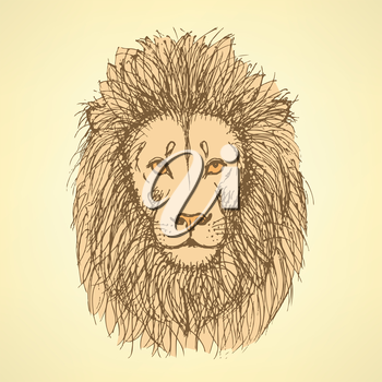 Sketch cute lion in vintage style, background