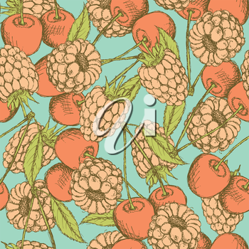 Sketch raspberry and cherry in vintage style, vector