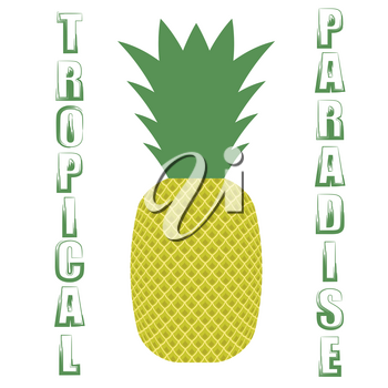 Pineapple Icon on White  Background. Vintage Fruit Poster, Banner, Logo or Label  with Lettering