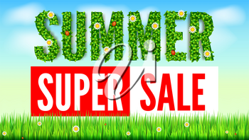 The inscription of summer green leaves of spring and summer flowers, ladybugs. Summer hot discounts. Selling ad banner. Text on green background of lawn, grass and sky with clouds. Eco-card.