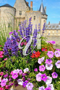 Flowerbed with bright colour flower in front of mediaeval castle Sully-sur-loire