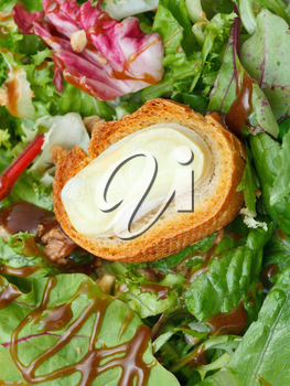 toasted bread with goat cheese on green lettuche with dressing close up