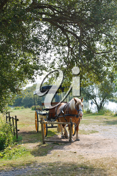 horse with carriage in village de Breca, in Briere Regional Natural Park, France