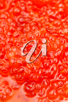 food background - sockeye salmon fish salted red caviar close up