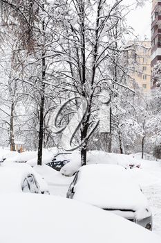 snow-covered cars near apartment houses in residential district of Moscow city in snowfall