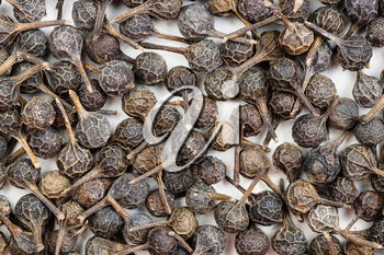 food background - many tailed pepper (cubeb) close up