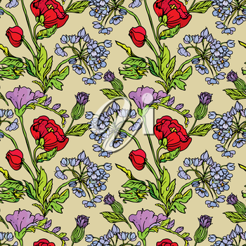 Seamless pattern with Realistic graphic flowers - poppy and sweet pea - hand drawn background.