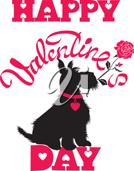 Holiday card. Calligraphic hand written text Happy Valentine s Day and scottish terrier dog silhouette with rose, isolated on white background.