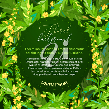 Agrimony. Tiny yellow flowers and bright pinnate leaves on dark green background. There is copy space for your text in the center.