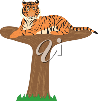 Royalty Free Clipart Image of a Tiger on top of a tree shaped like a 'T'