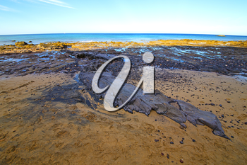 white coast lanzarote  in spain   beach  stone water  and summer