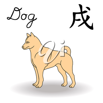 Eastern Zodiac Sign Dog, symbol of New Year in Chinese calendar, hand drawn vector artwork isolated on a white background