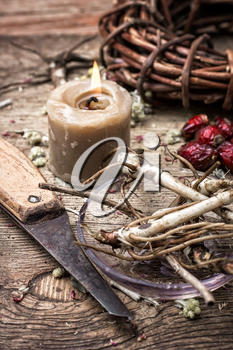 medicinal herbs and roots in dried form,as means of alternative medicine.Selective focus