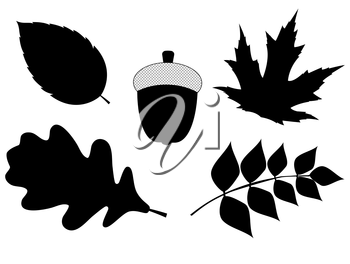 Acorn with Leaves Vector Silhouette Illustration. EPS10