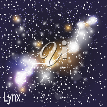Lynx Constellation with Beautiful Bright Stars on the Background of Cosmic Sky Vector Illustration. EPS10
