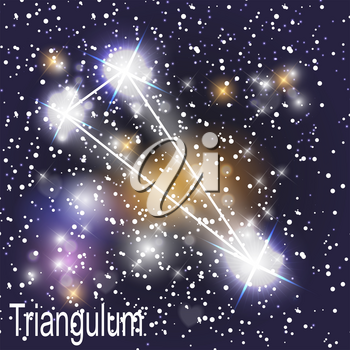Triangulum Constellation with Beautiful Bright Stars on the Background of Cosmic Sky Vector Illustration. EPS10