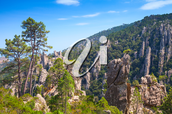 Natural landscape of Corsica island, tall sharp mountains and pine trees