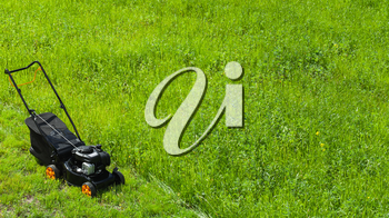 Modern gasoline powered rotary push mower or grass cutter stands on fresh green lawn