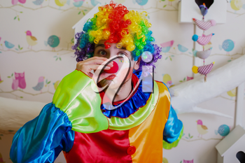 Funny clown with colorful hairstyle pushes himself on the red nose. Blur background