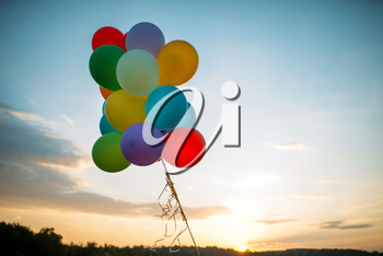 Bunch of colorful balloons flying in the sky at sunset, birthday or wedding celebration concept
