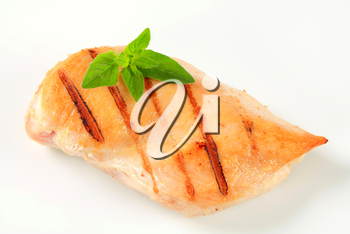 Grilled chicken breast isolated on white