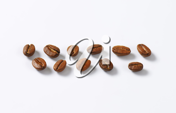 Roasted coffee beans arranged in lines