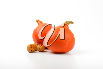 two orange pumpkins with walnuts on white background
