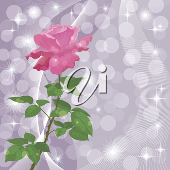 Holiday background with flower rose and abstract pattern. Eps10, contains transparencies. Vector