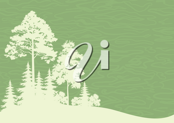 Forest Landscape, Coniferous and Deciduous Trees Silhouettes on Green Background. Vector
