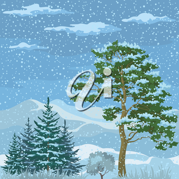 Seamless Horizontal Christmas Background, Winter Mountain Landscape with Pine Trees, Firs, Green Grass and Blue Sky with Snow and Clouds. Vector