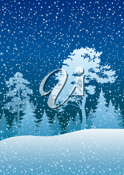 Night Winter Christmas Woodland Blue Landscape with Pine and Fir Trees silhouettes and Blue Sky with Snow. Vector