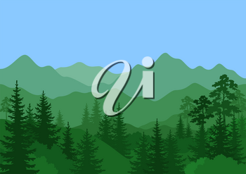 Summer Mountain Landscape with Green Coniferous and Deciduous Trees and Blue Sky. Vector