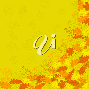 Vector, orange autumn leaves and contours on yellow background