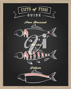 Chalkboard with Cuts of Fish Guide. Vector illustration.
