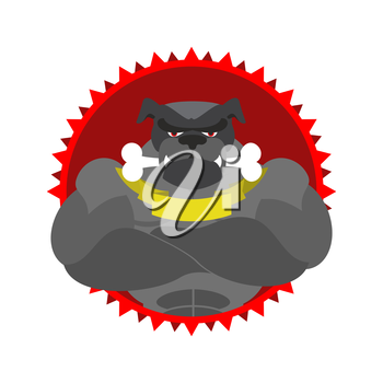 Angry dog Round emblem. Large Bulldog bodybuilder with bone. Vector logo pet with big muscles. Logo for the Sports Club.