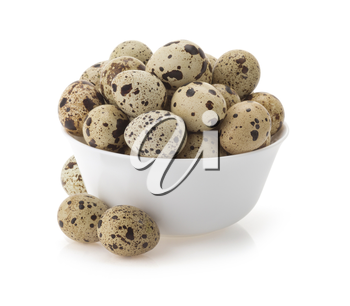 quail eggs in bowl isolated on white background