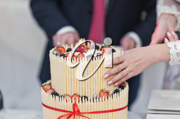 Wedding cake is divided into shares.