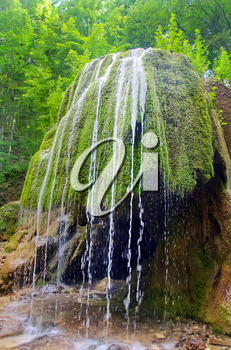 waterfall in forest, waterfall in Crimea spring forest